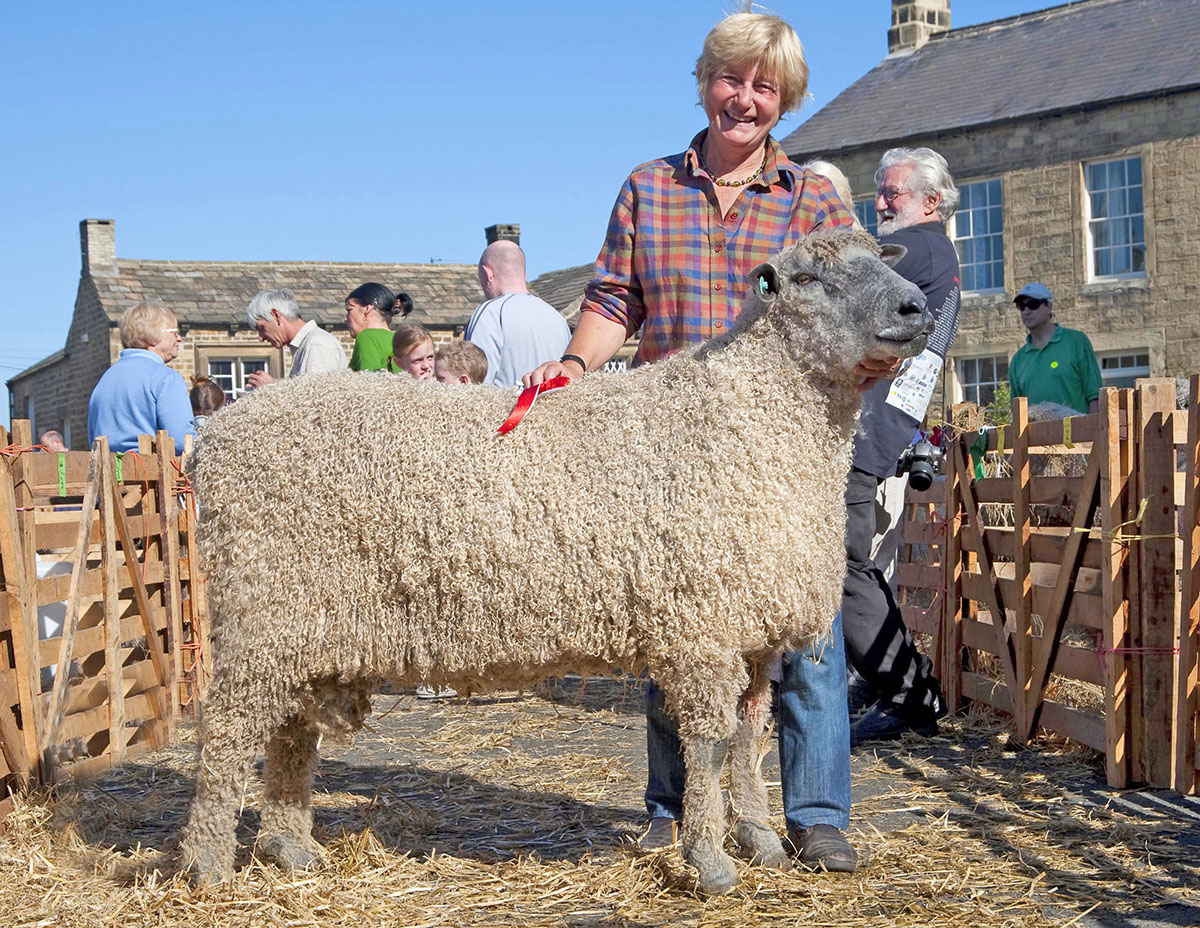 Shelagh and sheep at Masham